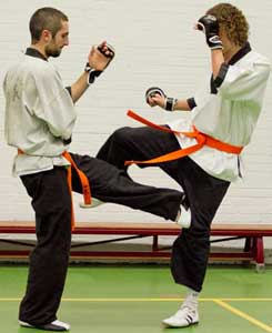 Zelfverdediging met Wing Chun in Hoogvliet